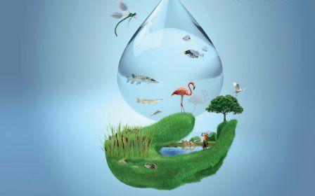 Tratamiento de aguas: Servicios de Revigas
