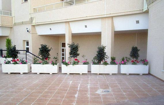 Foto 4 de Jardines (diseño y mantenimiento) en Vélez-Málaga | Plante Verde