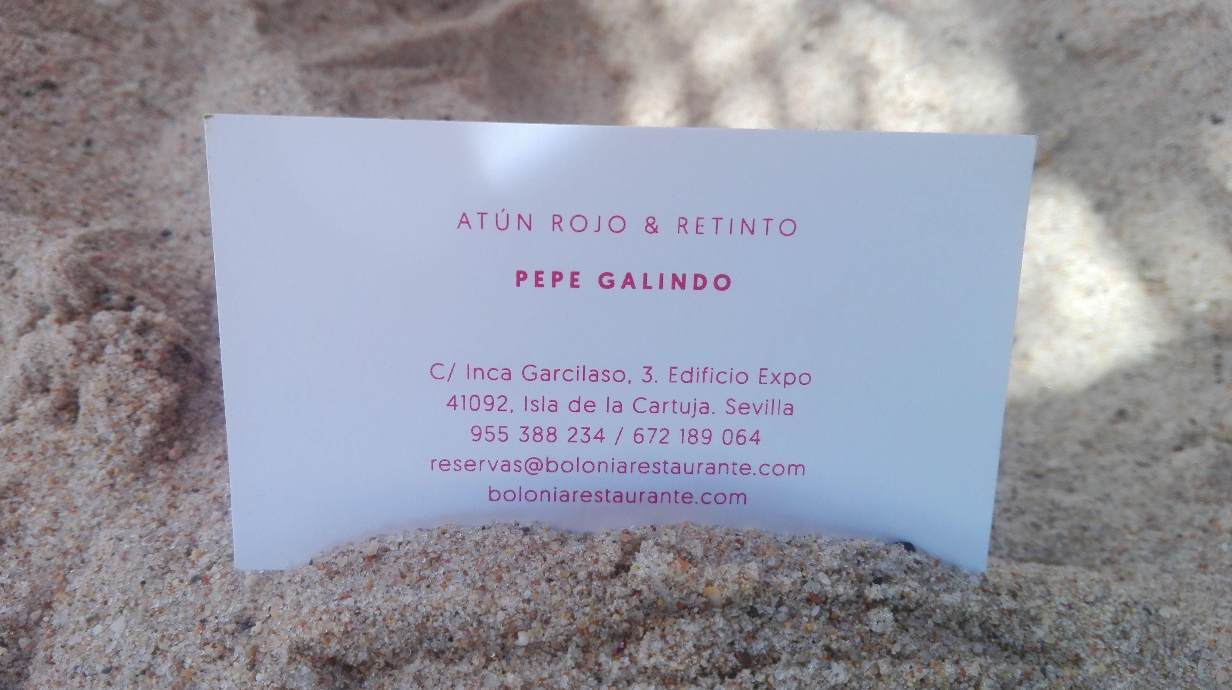 Exclusive Restaurant Seville