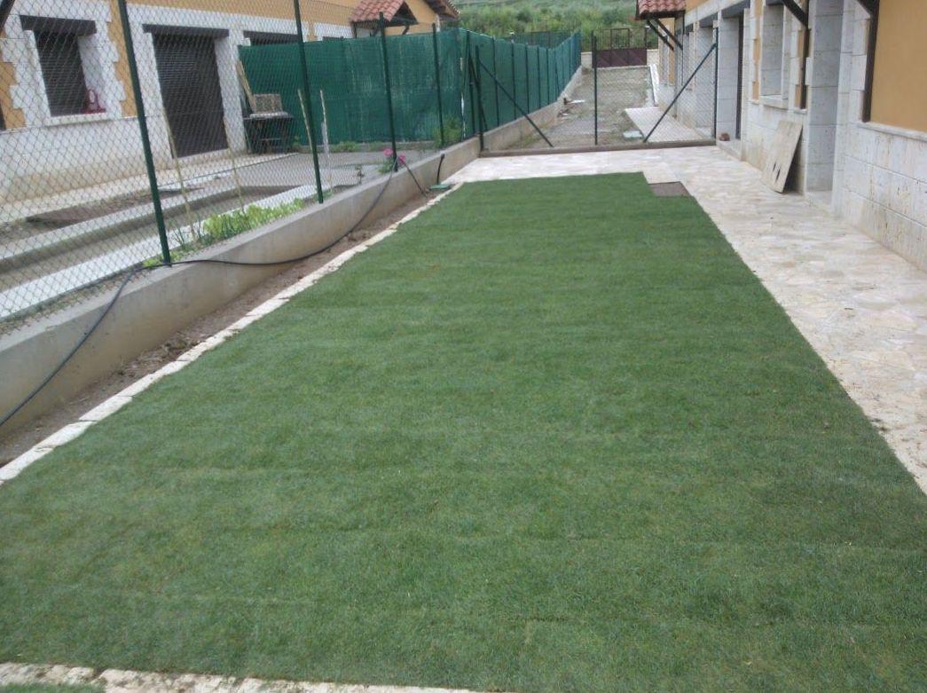 Foto 35 de Jardines (diseño y mantenimiento) en Santo Domingo de La Calzada | Todojardín