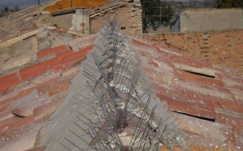 Pinchos antiaves en cubiertas y tejados