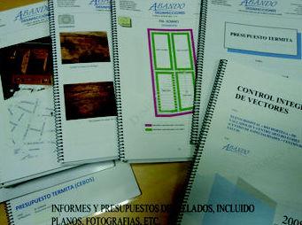 Control de plagas en Bilbao