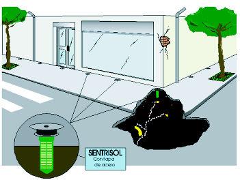 Foto 26 de Tratamiento de maderas en Getxo | Abando Desinfecciones