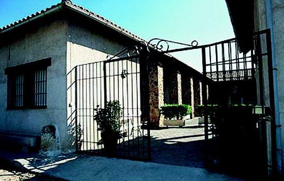 Adiestramiento en San Agustín del Guadalix - Madrid