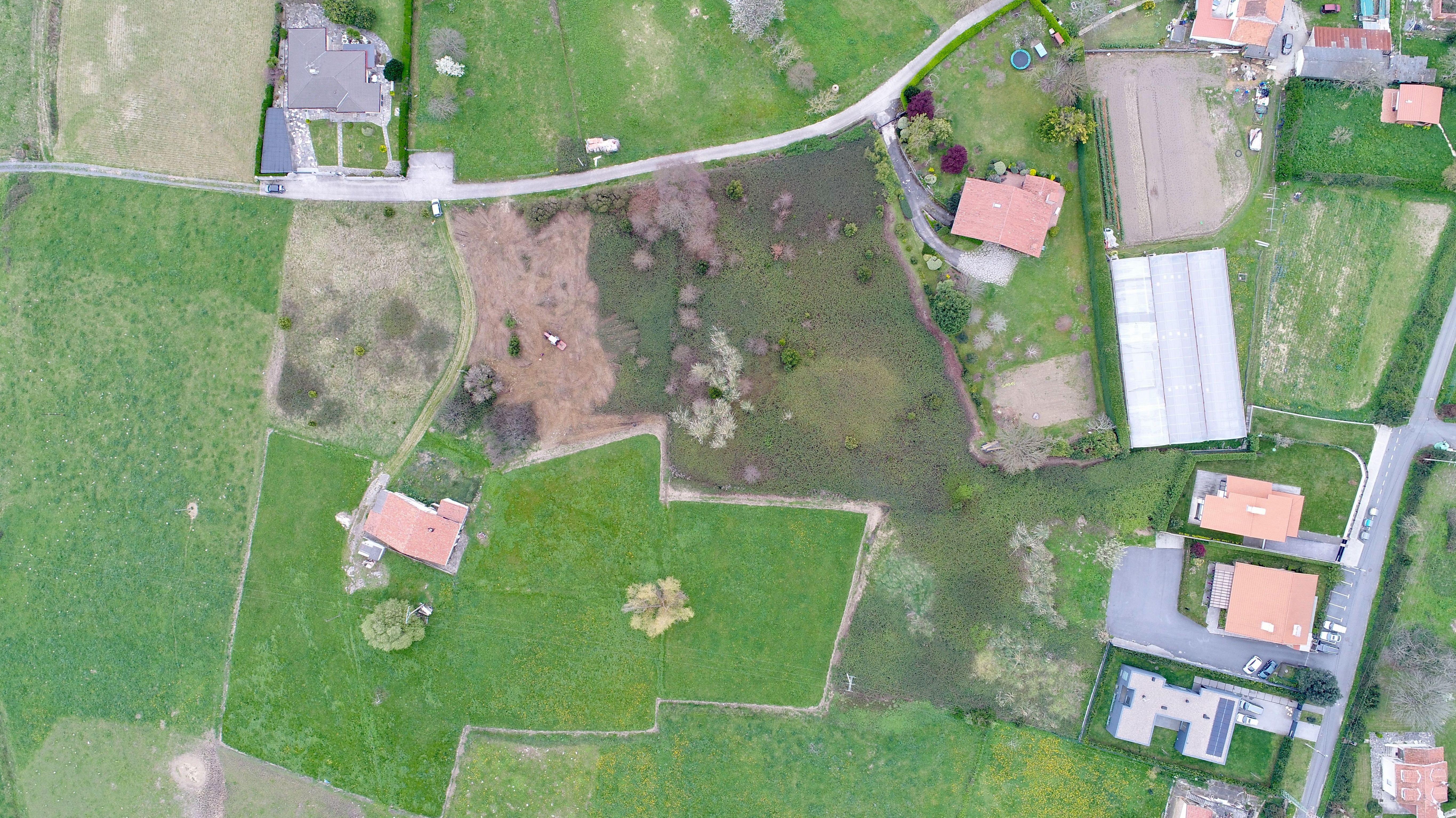 Desbroces de terrenos en Bizkaia
