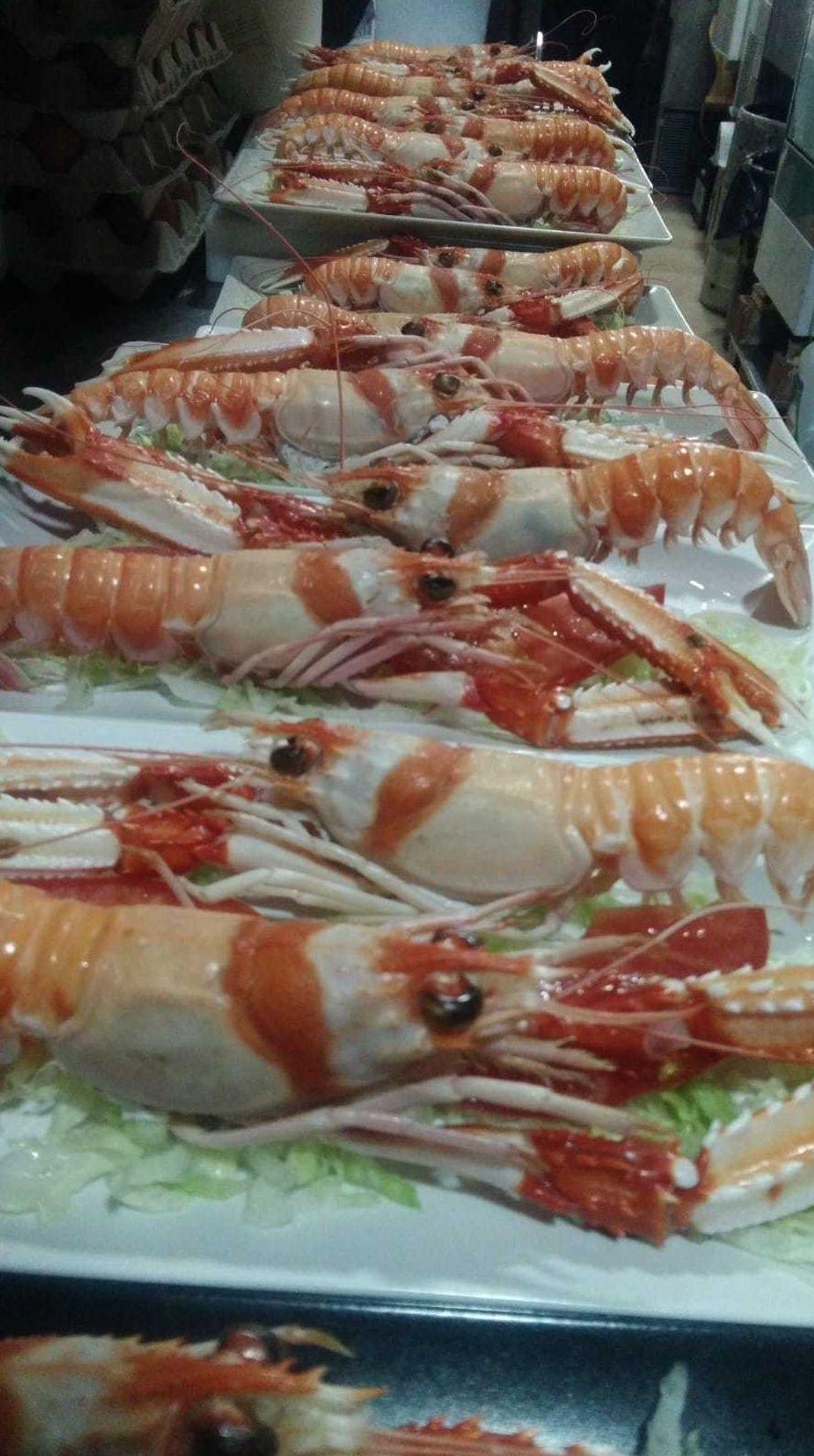 Prueba el marisco más fresco de Málaga