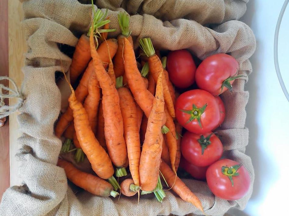 Tienda de alimentación ecológica y natural en Tenerife