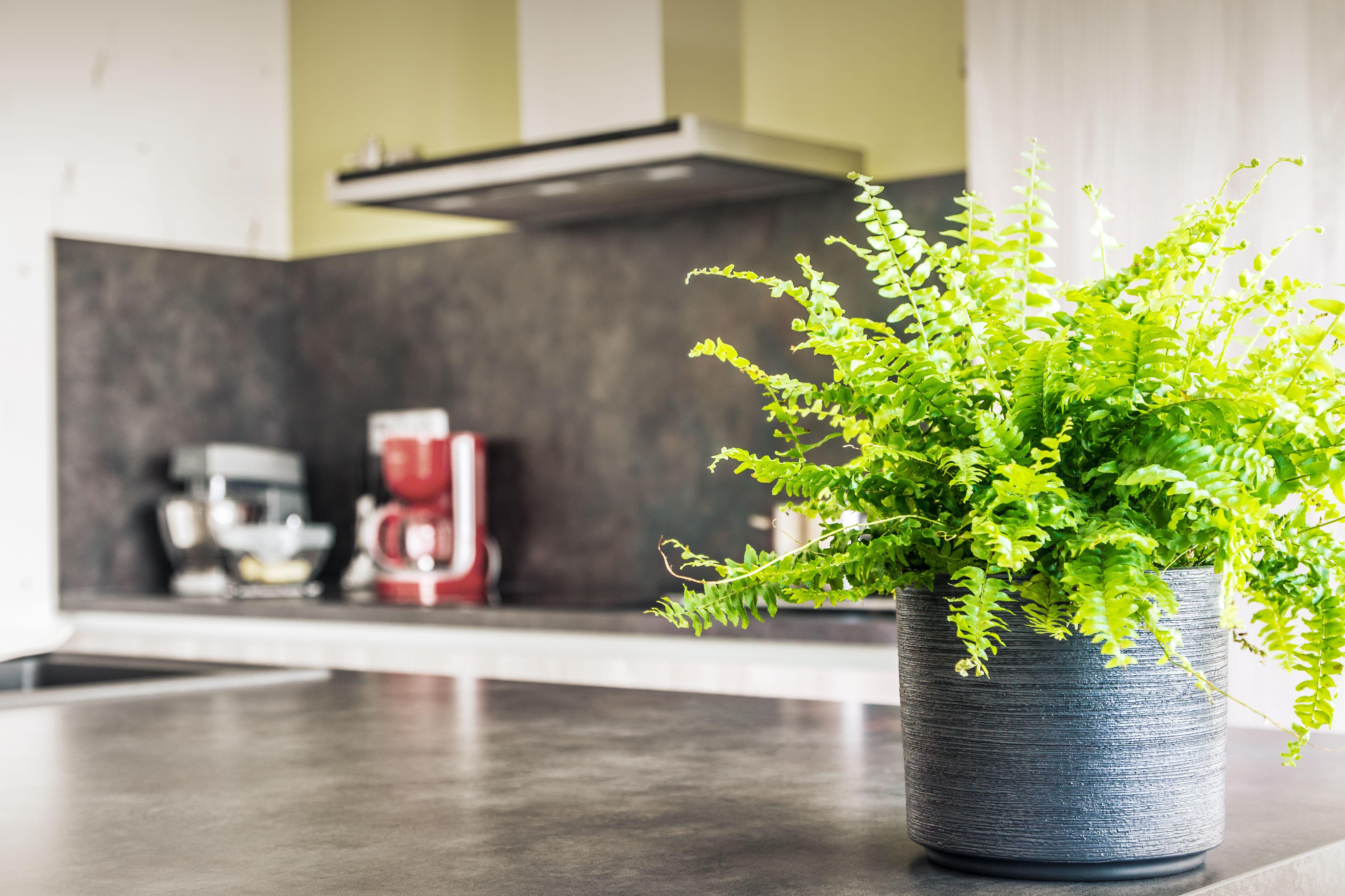 Foto 10 de Muebles de baño y cocina en Mungia | Cocinas ibinarriaga