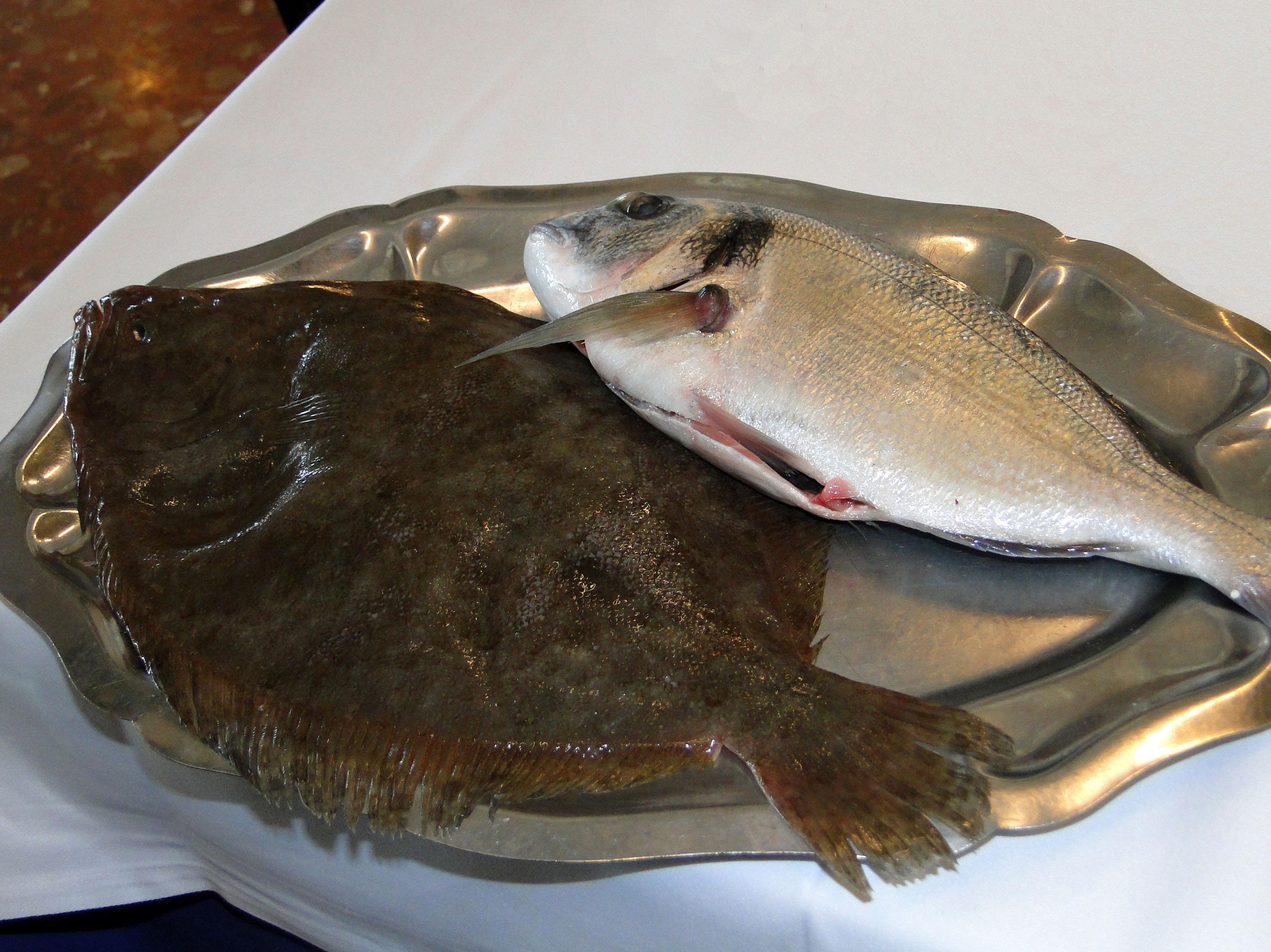 Pescados de la mejor calidad