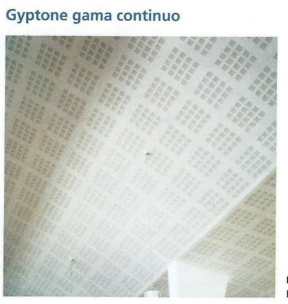 Placas Gyptone techos continuos