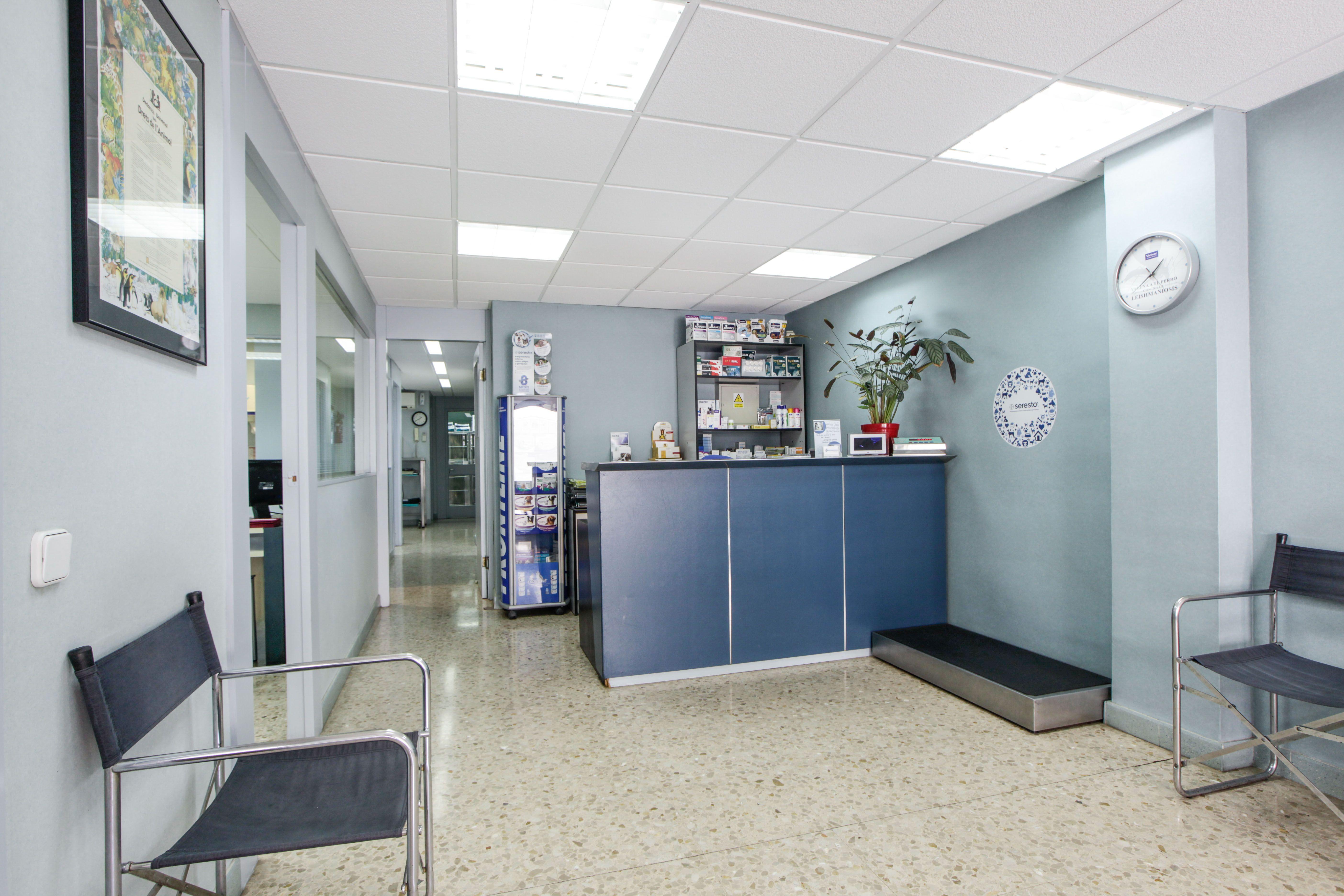 Foto 2 de Veterinarios en Sant Feliu de Llobregat | Centre Veterinari Lacueva Rodrigo