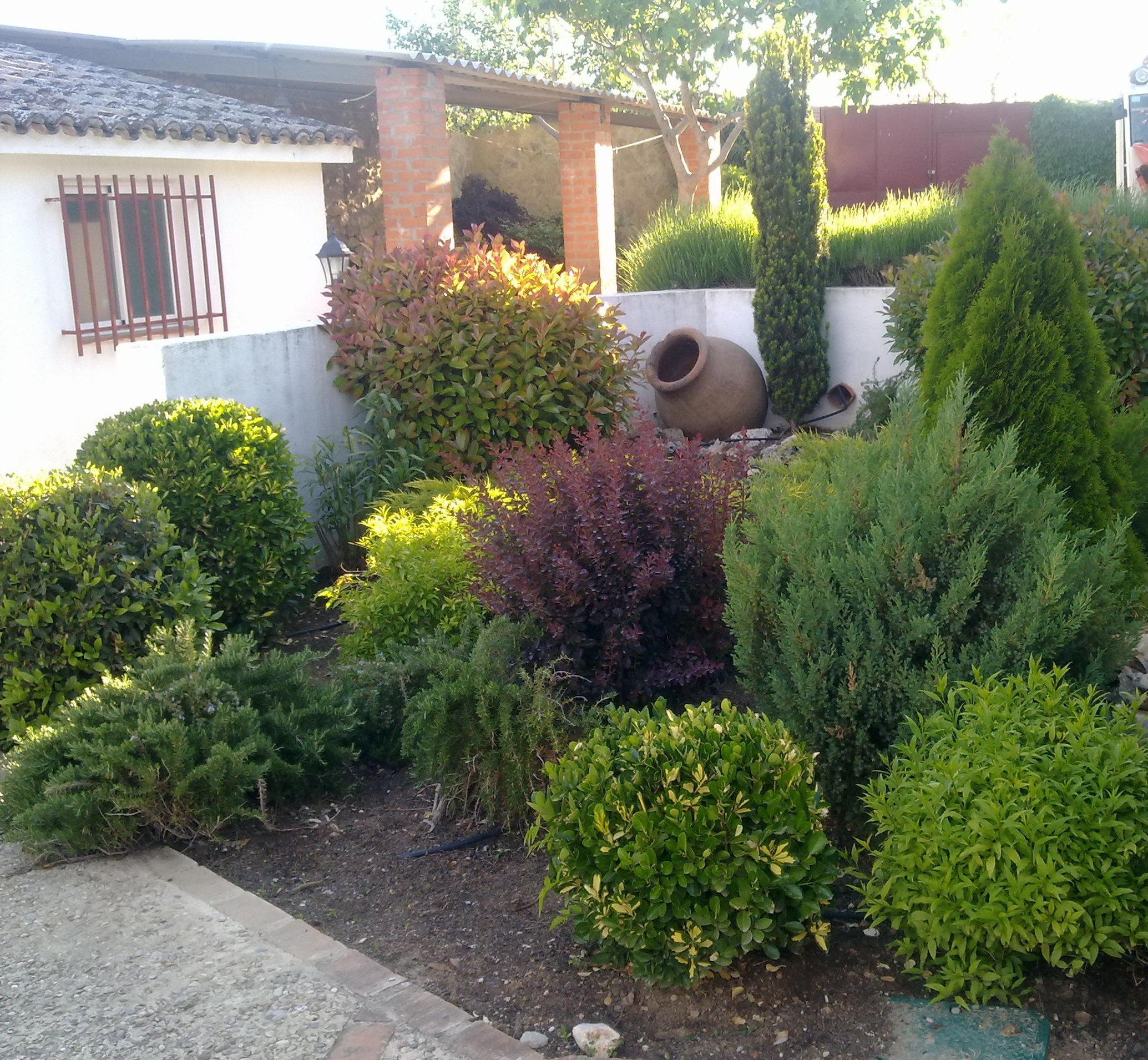 Foto 22 de jardines dise o y mantenimiento en santorcaz for Diseno de jardines pequenos sin cesped
