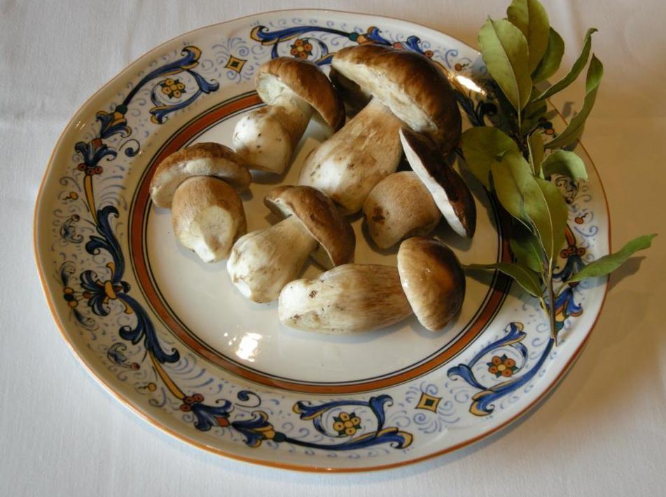 Foto 19 de Cocina aragonesa en Sos del Rey Católico | La Cocina del Principal