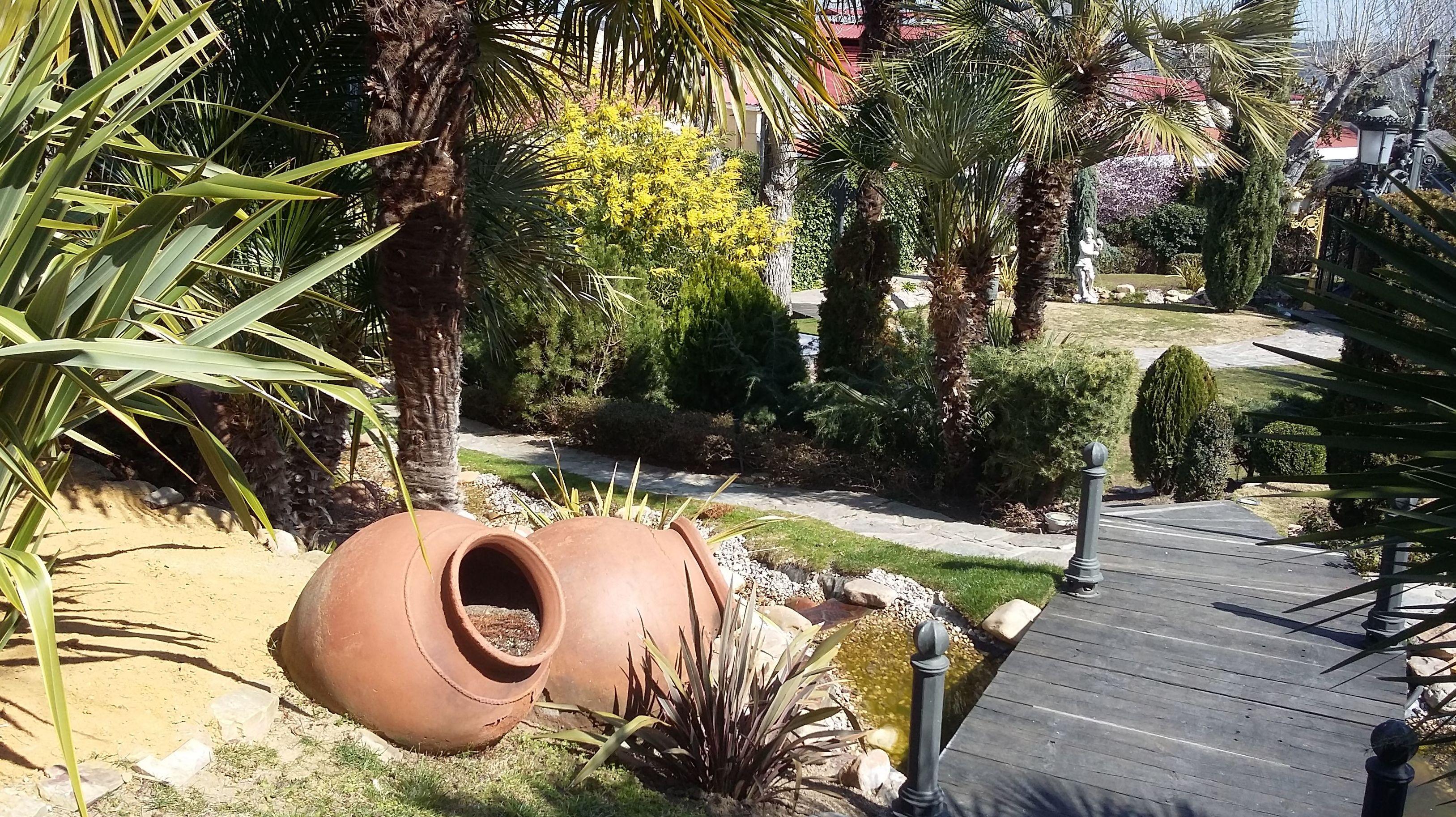 Diseño y mantenimiento de jardines en Boadilla del Monte