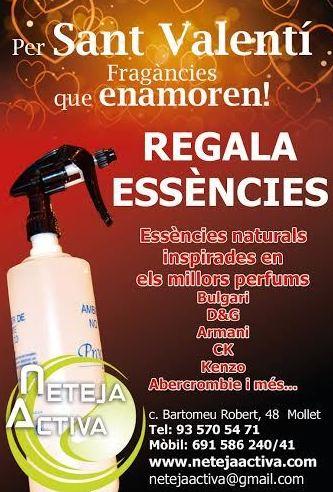 Foto 40 de Todo tipo de limpiezas en Mollet del Vallès | Neteja Activa