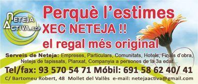 Foto 19 de Todo tipo de limpiezas en Mollet del Vallès | Neteja Activa