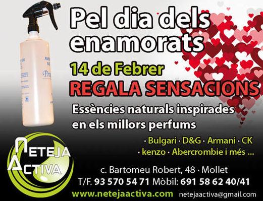 Foto 45 de Todo tipo de limpiezas en Mollet del Vallès | Neteja Activa