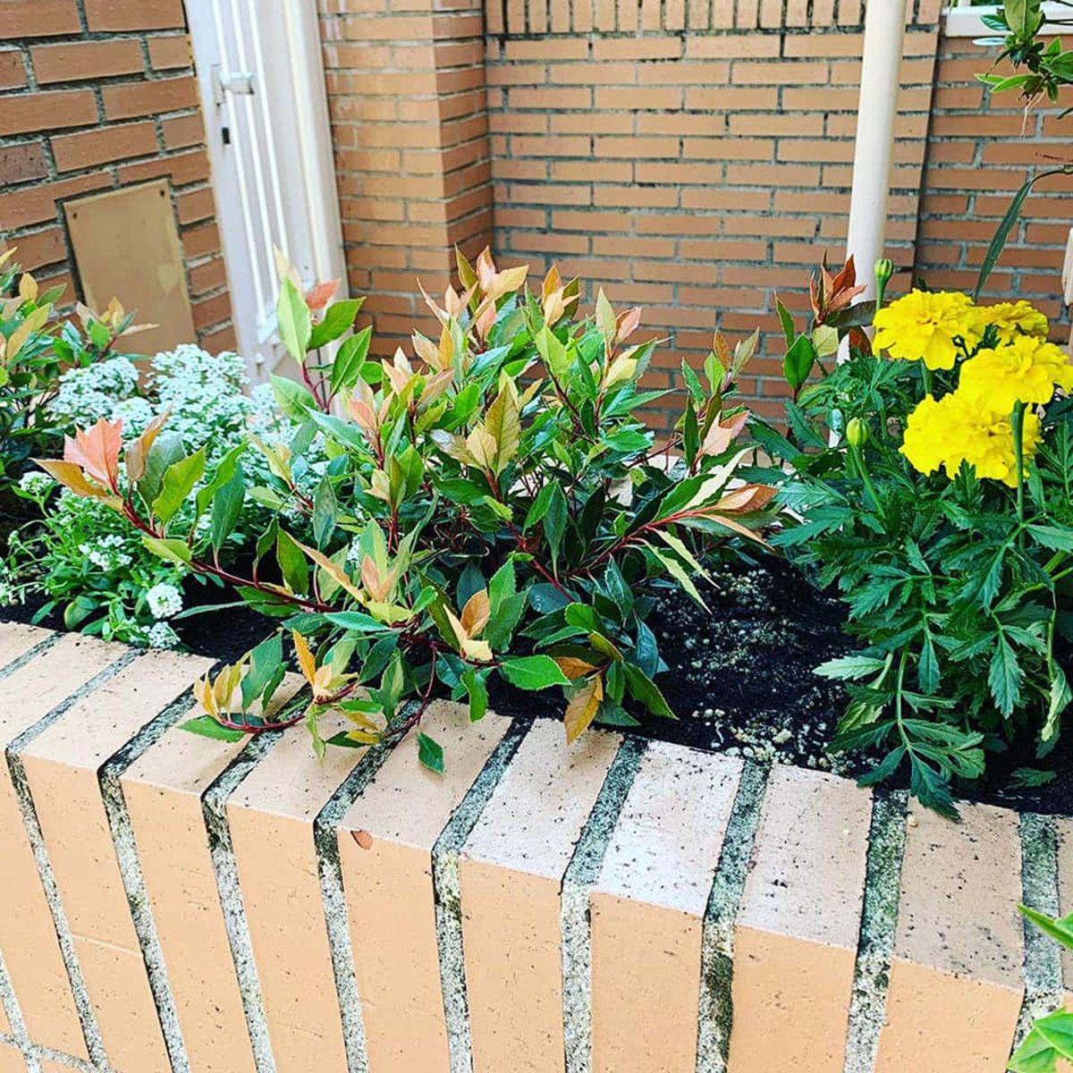 Decoración de jardines Navarra