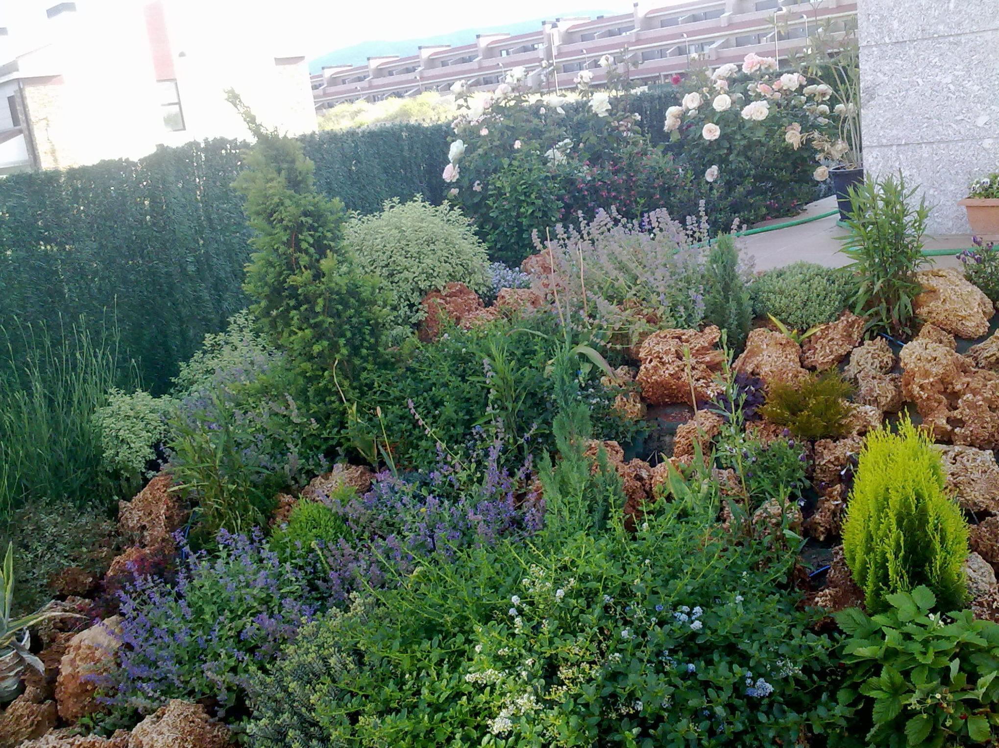 Foto 29 de Jardinería en  | Jardinería Belardi, S.L.
