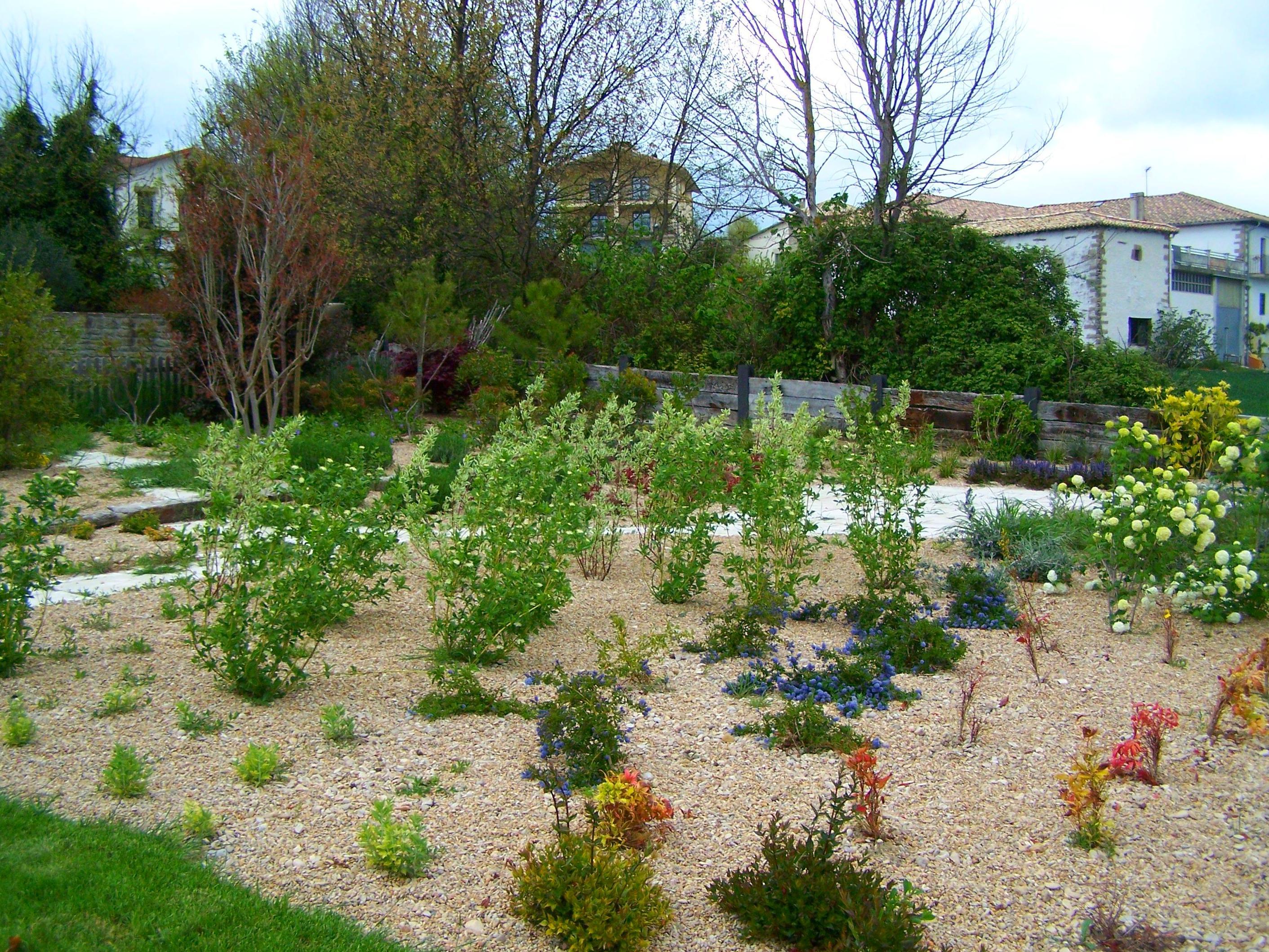 Ajardinamiento vivienda. Evolución plantas arbustos tapizantes con áridos.