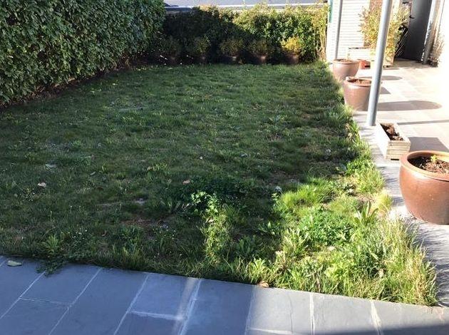 Foto 2 de Jardinería en  | Jardinería Belardi, S.L.