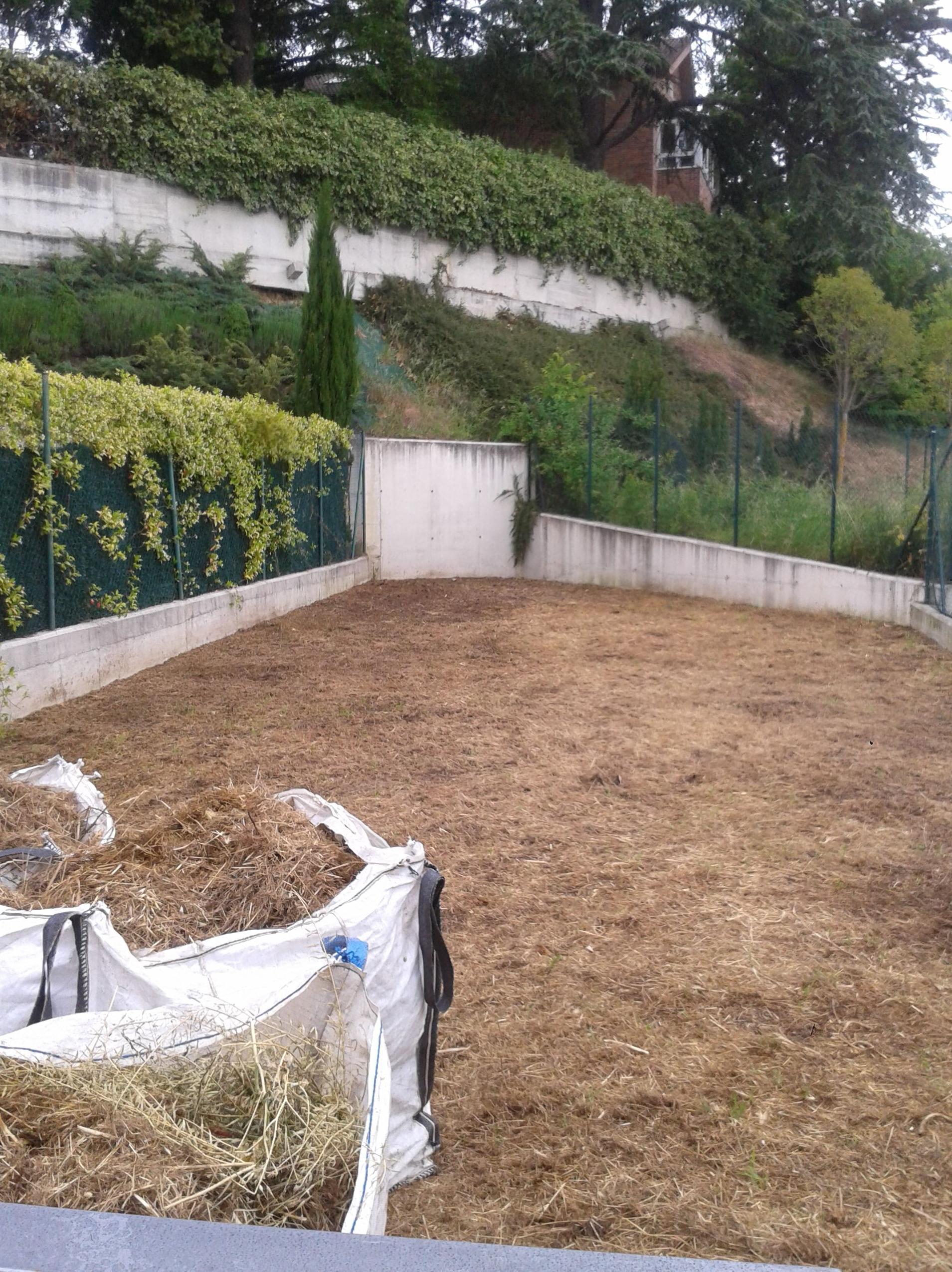 Jardín inicio.