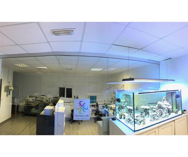 Laboratorio de protésicos dentales en La Coruña