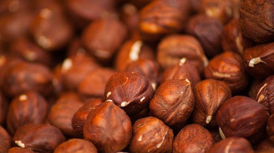Venta al por mayor de frutos secos en España, Portugal y norte de África