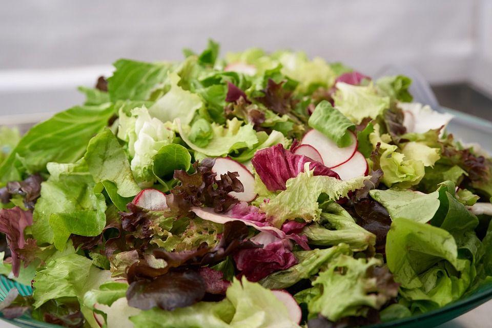Menú vegetariano: Servicios de