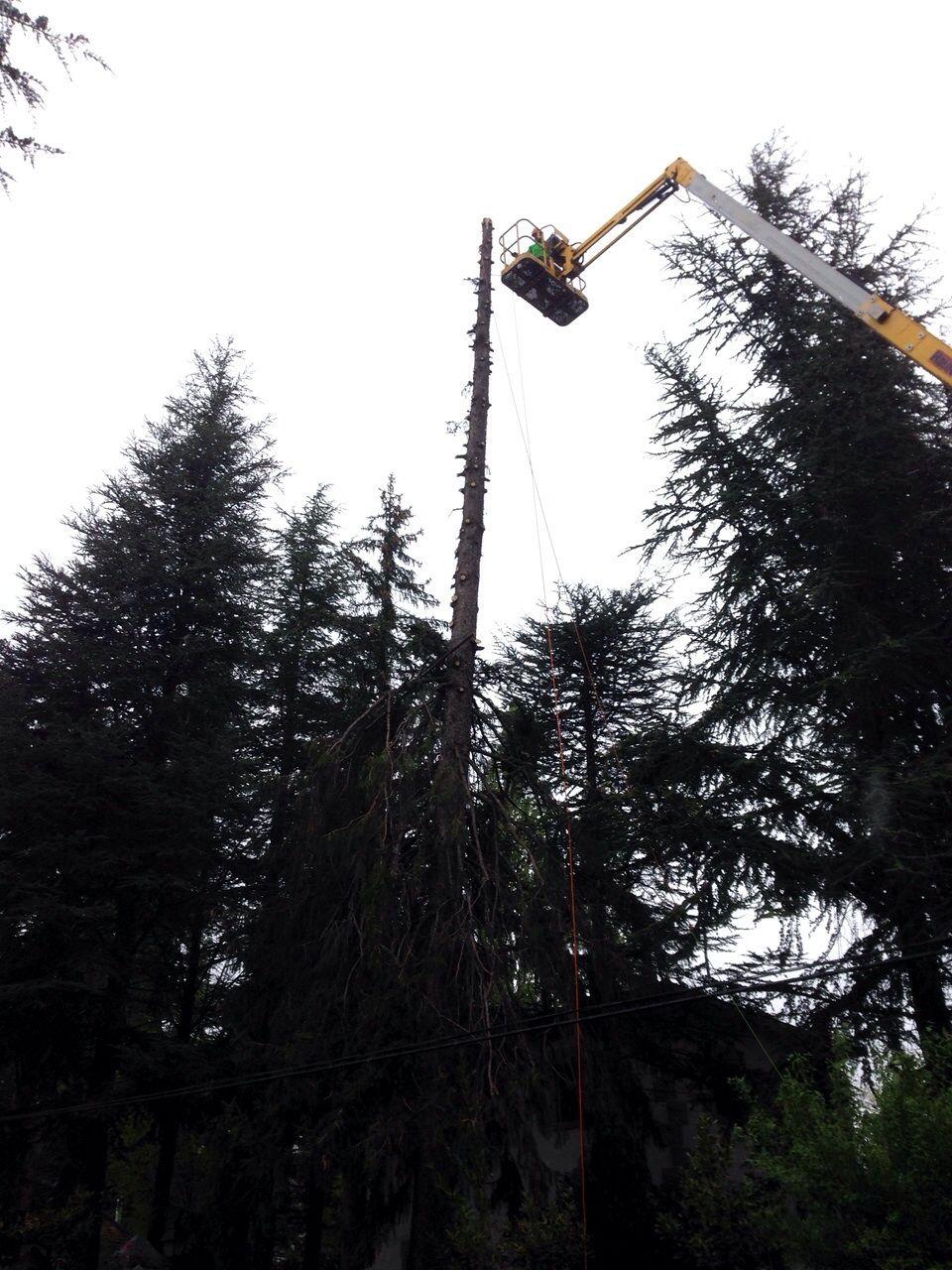 Maquinaria especial para trabajos en altura en Torrelodones