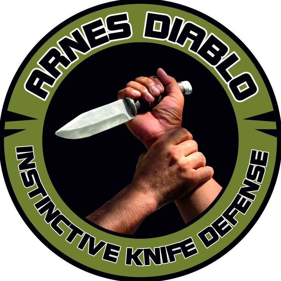 Arnes Diablo: Disciplinas de Dojo Rivera Ryu