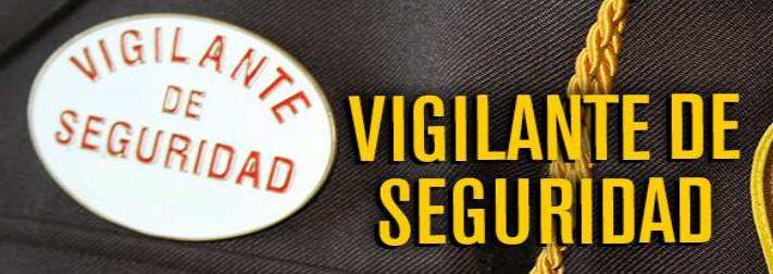 Vigilante de seguridad: Servicios de Asepro