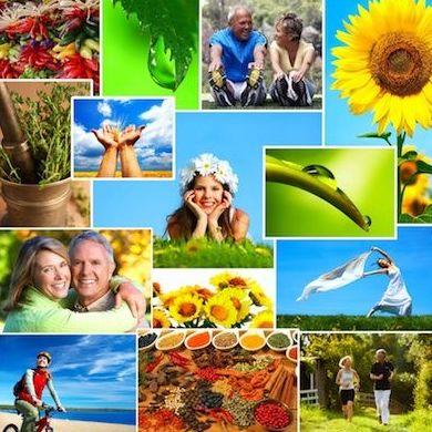 Talleres para el bienestar: Servicios de Biota Natura
