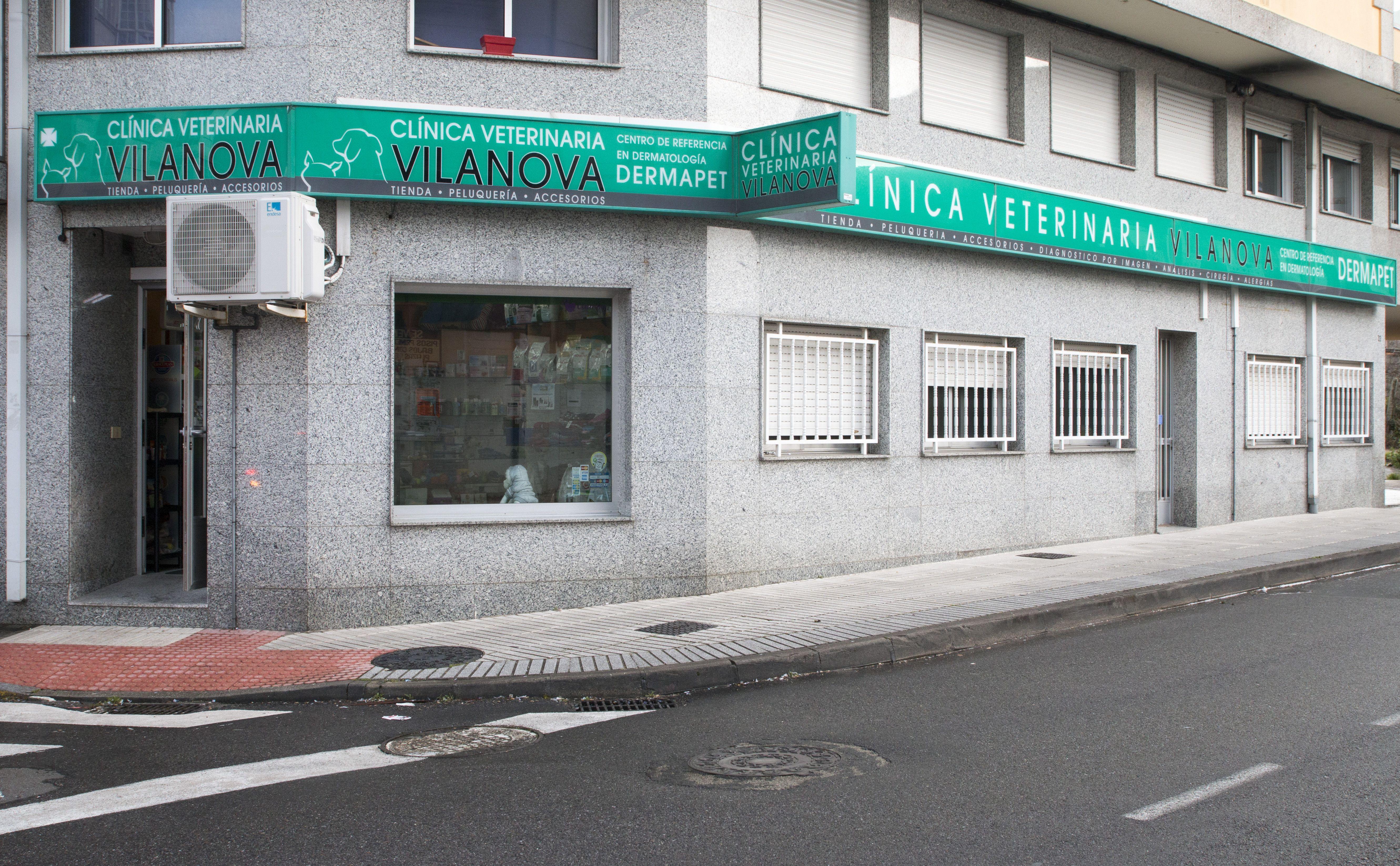 Foto 2 de Veterinarios en Vilanova de Arousa | Clínica Veterinaria Vilanova
