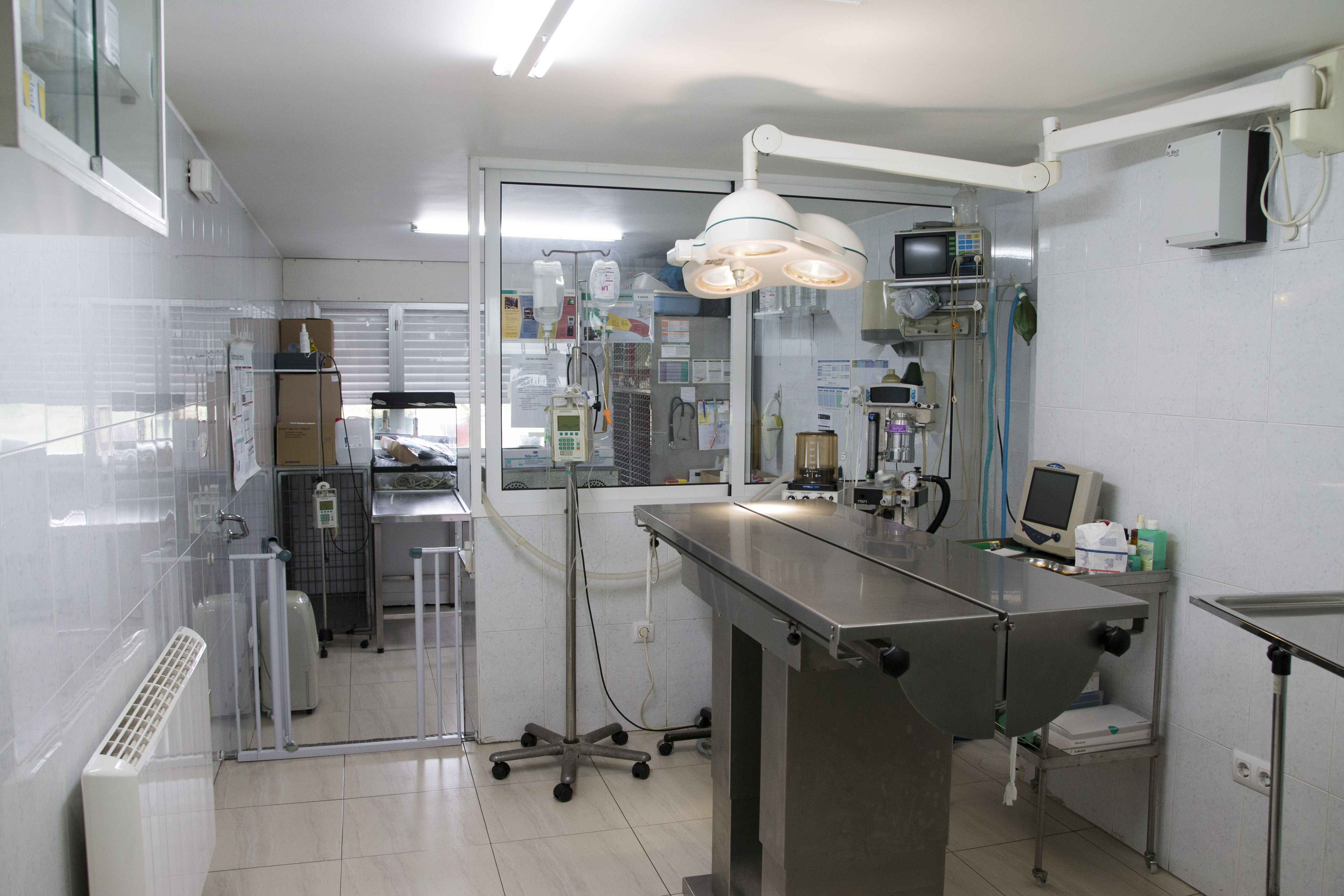 Foto 6 de Veterinarios en Vilanova de Arousa | Clínica Veterinaria Vilanova