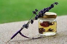 Terapia Floral: Servicios de Magnòlia