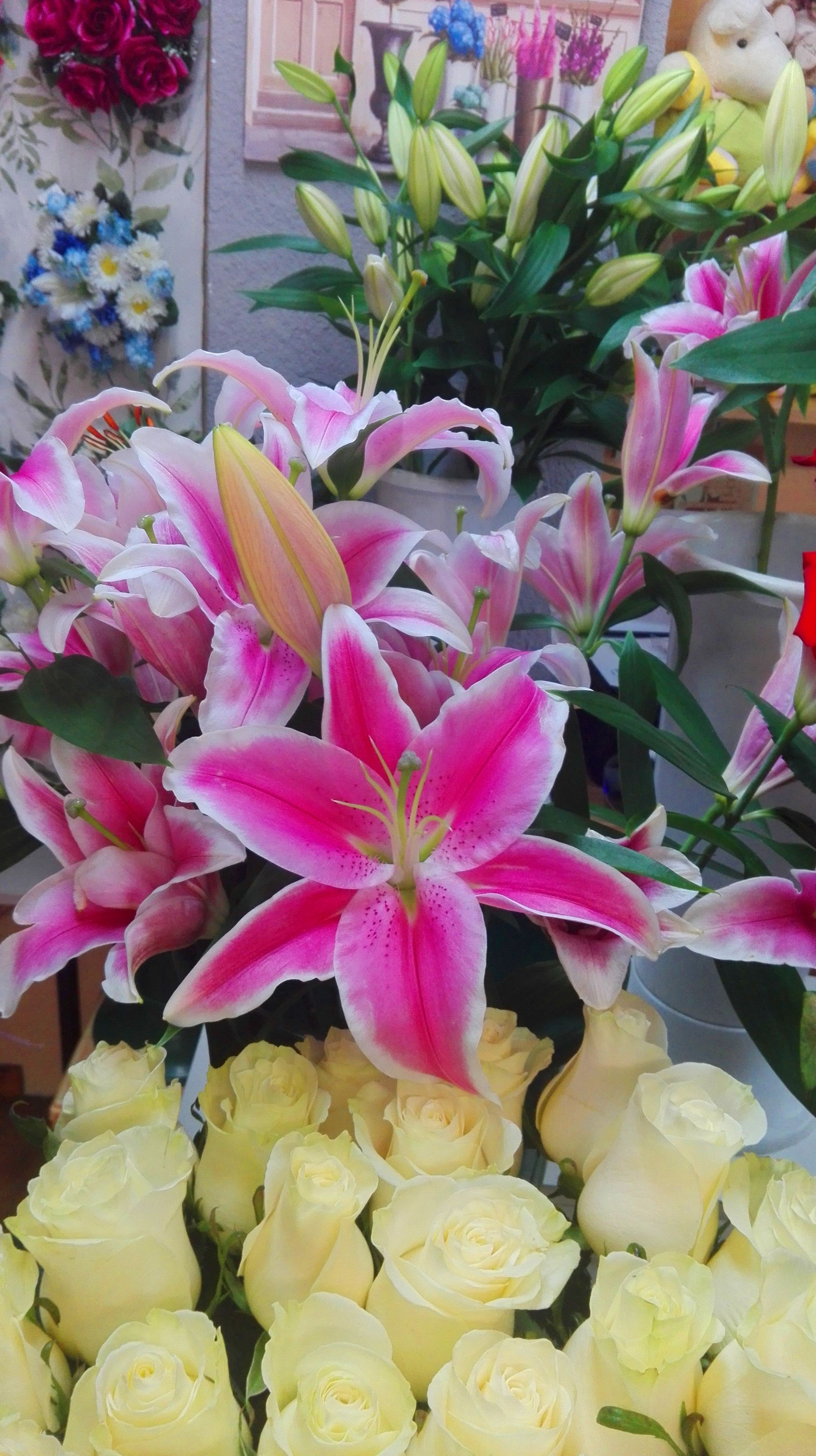 Flores frescas siempre