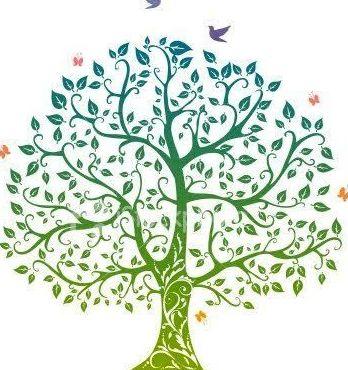 Sanación simultanea de sistemas familiares: Terapias y actividades de Kumara Centro Holístico