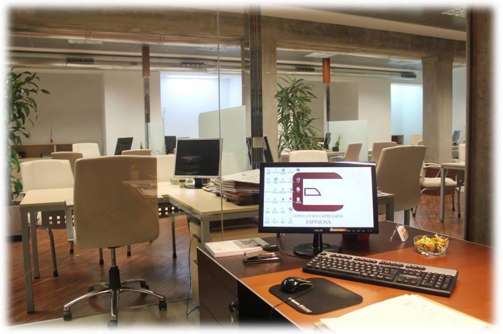 Consultoría Empresarial Espinosa