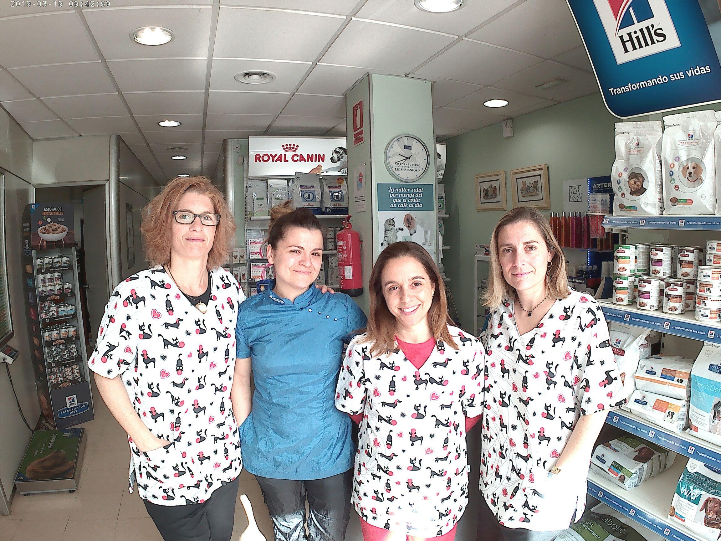 Medicina interna veterinaria en Mataró