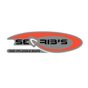 Sea Rib's: Taller mecánico de Nautica Castavi, S.L.