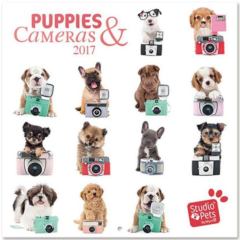 Calendario Pared 2017 Studio Pets Puppies Camera