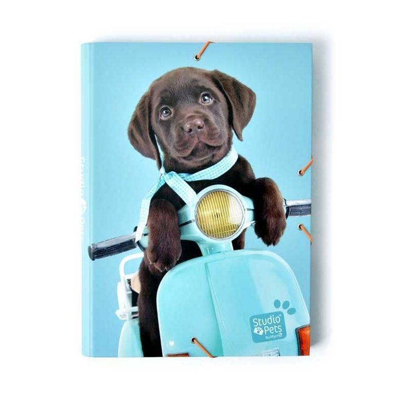 1 Carpeta solapas Studio Pets Dog Camera