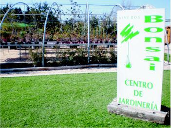 Foto 5 de Jardines (diseño y mantenimiento) en Belvis de Jarama | Viveros Bonsai