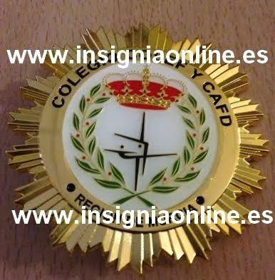 INSIGNIA PROFESIONAL DE EDUCACIÓN FISICA
