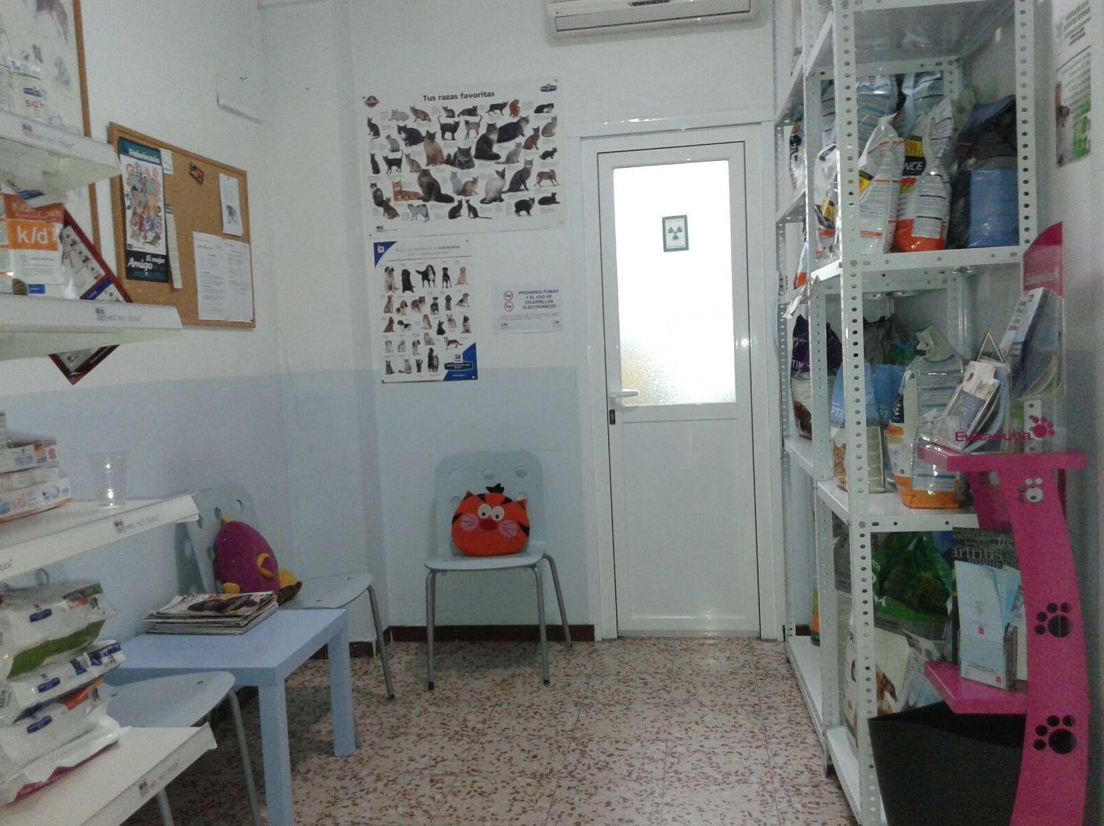 Veterinario Hortaleza