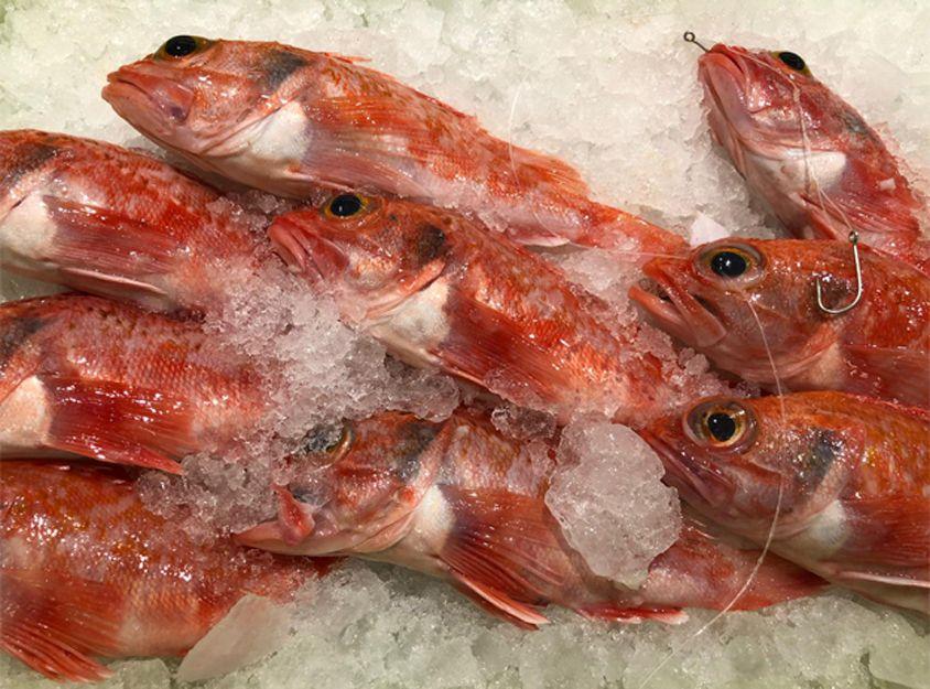 Restaurante de pescados y mariscos en Tenerife