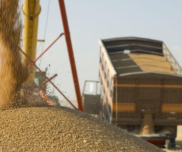 Almacén y transporte de  materiales de construcción en Badajoz