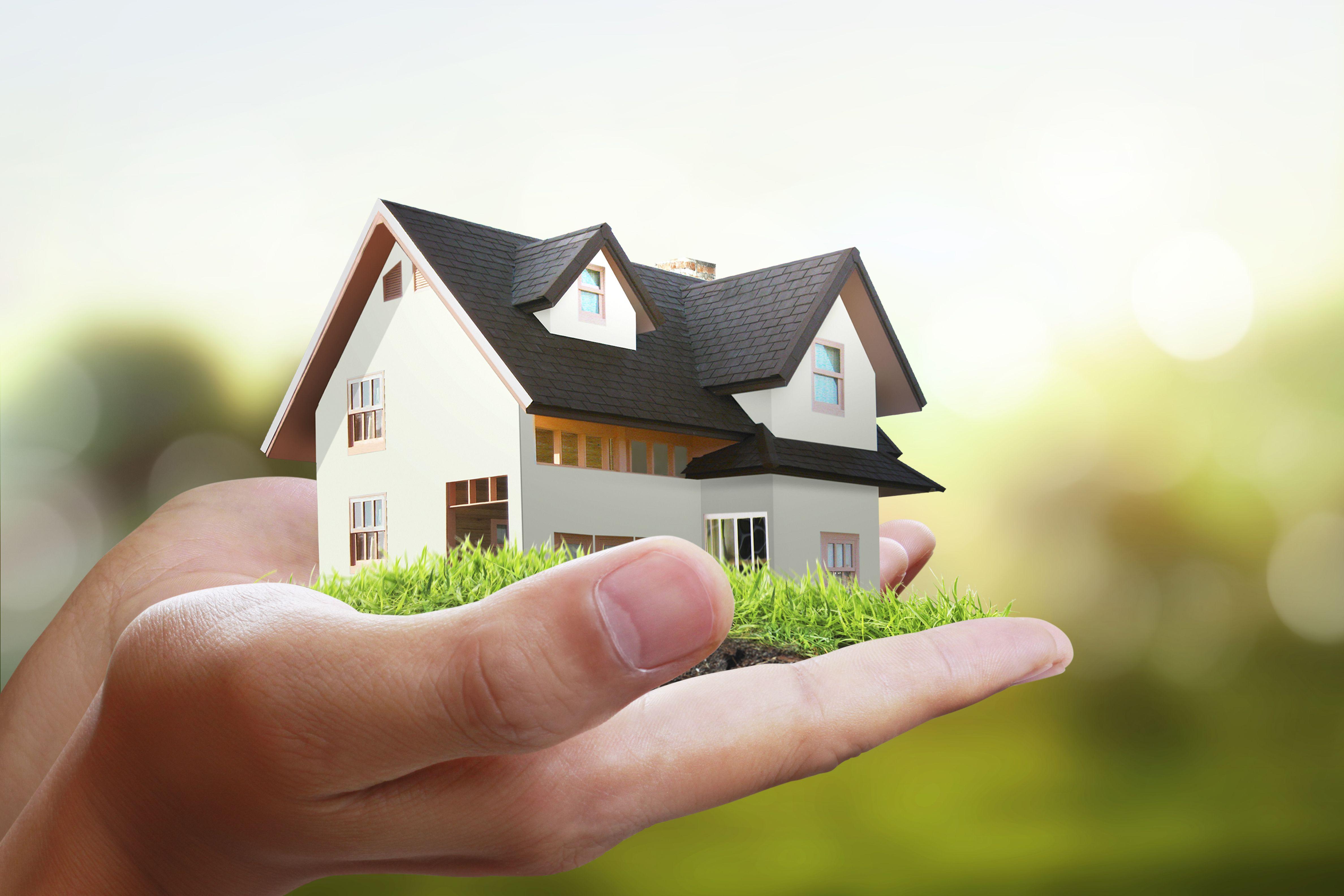 Asesoramiento en eficiencia energética: Servicios de Bioponent