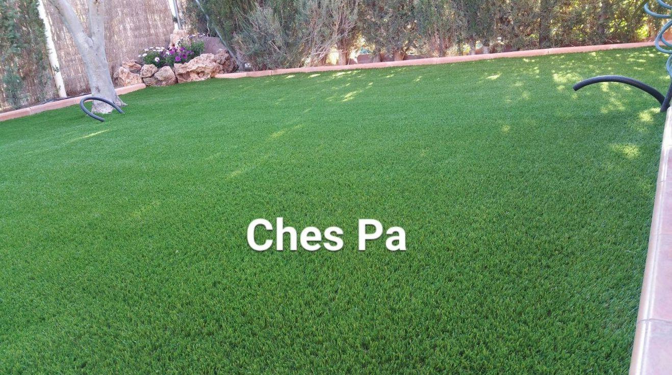 Foto 509 de Diseño y mantenimiento de jardines en  | Ches Pa, S.L.